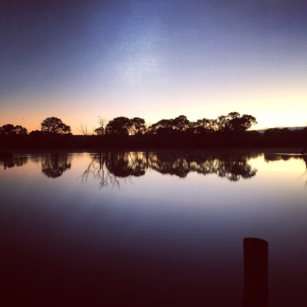 Morning walk by the River Murray